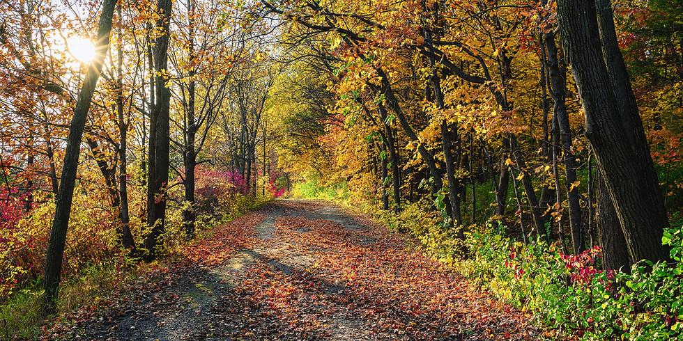 Carver Park Reserve w/Minnetonka Comm. Ed.