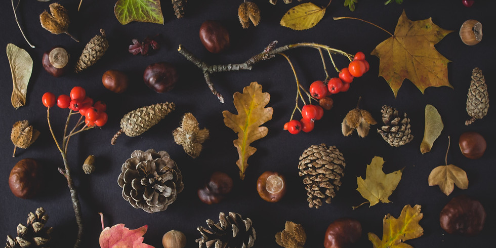 A Walk for Thanksgiving - TBD