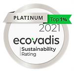 Ecovadis 2021 Platinum Medal.png