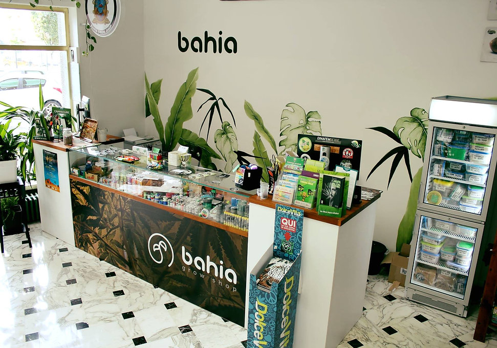 bahia3.jpg