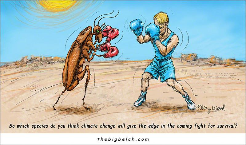 KayWoodCartoon-clr-survivaldukeout2-72800.jpg