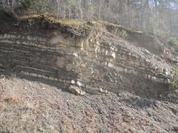Çağlayan Formation/Central Pontides