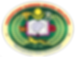 NAM Logo 2017 High Resolution.png