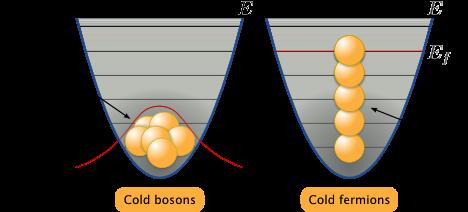 bosoni e fermioni.png