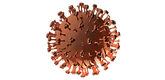 712-coronavirus.png