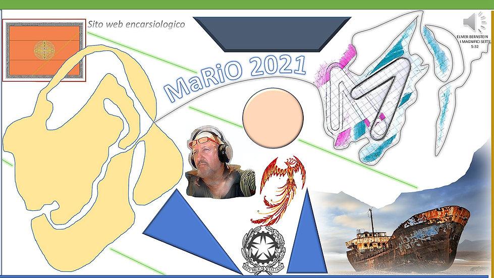 MARIO2021.jpg