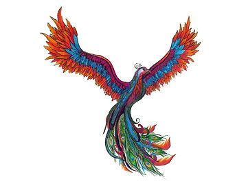 peacock_phoenix_by_lundbergch-d6cxvu4.jp