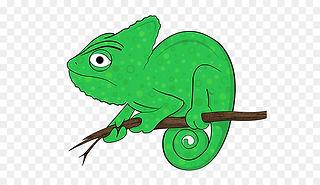 kisspng-chameleons-iguanas-amphibian-cli
