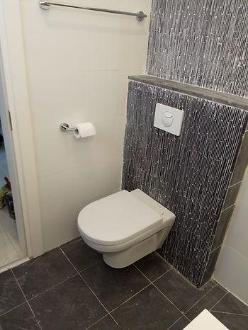 ניאגרה סמויה ואסלה צפה בחדר האמבטיה