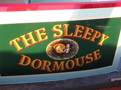 The Sleepy Dormouse