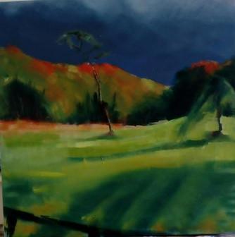 Autumn in Cavan 2
