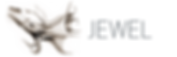 jewel-logo-full-1.png