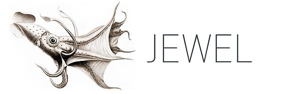 jewel-logo-full-1.png