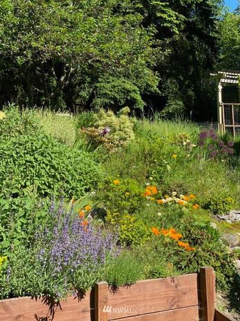RoyRoad_Garden1.jpeg