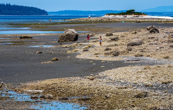 3273 S Harbor View Dr 22.jpeg