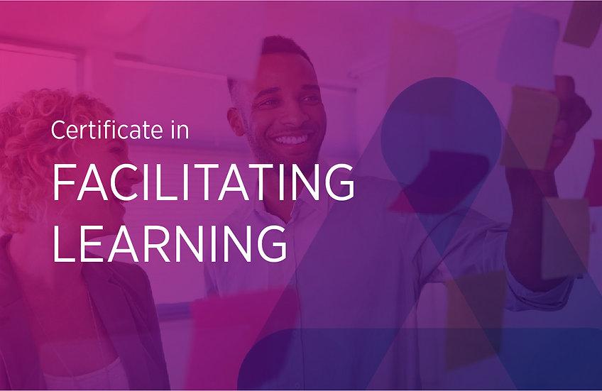Facilitating Learning (Fundamentals)