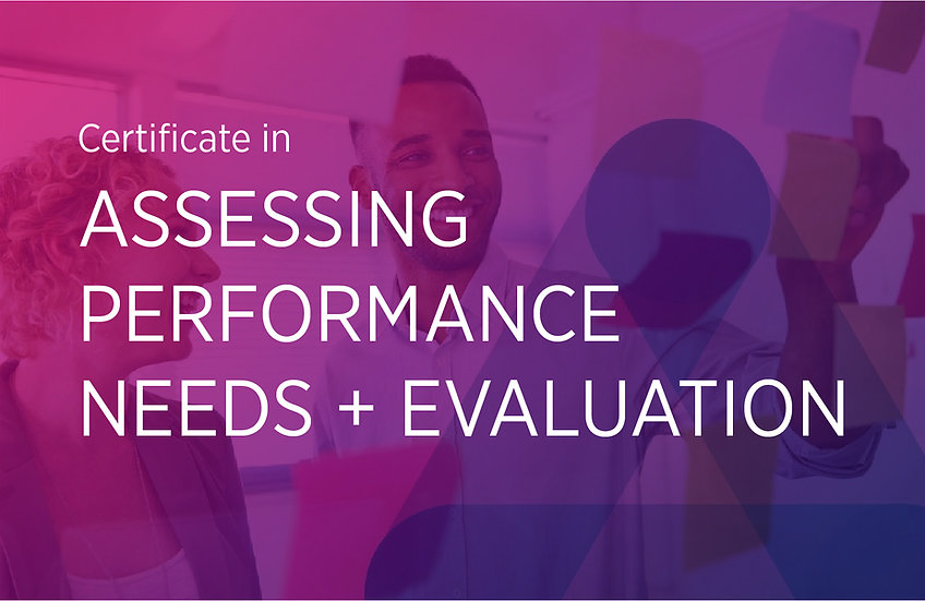 Assessing Performance Needs + Evaluation