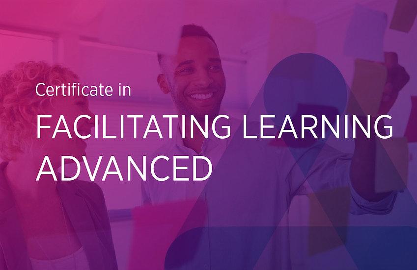 Facilitating Learning (Advanced)