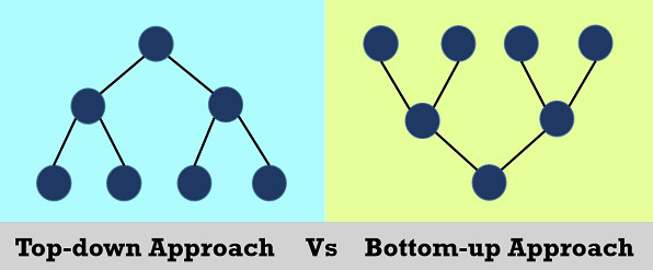 bottom-up vs top-down networks