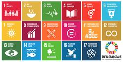 UN's_17_Sustainable_Development_Goals_