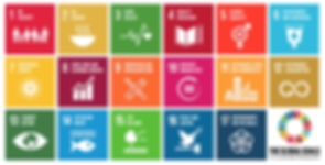 UN's_17_Sustainable_Development_Goals_