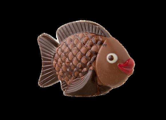 Šokoladinė žuvytė