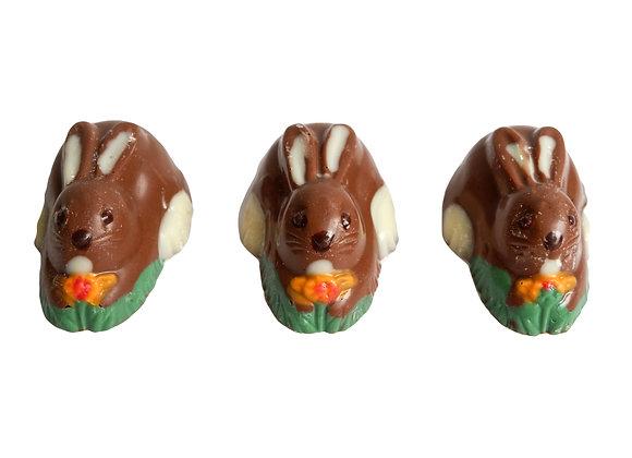 Šokoladinis zuikutis