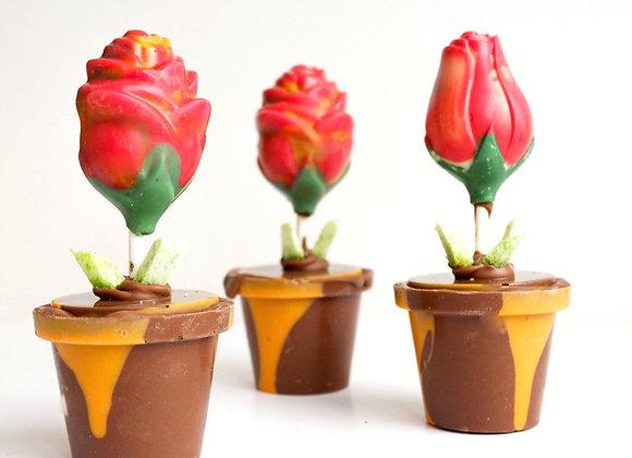 Šokoladinė gėlytė vazonėlyje