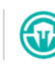 StJude_Valiant_Immortals_Logo.png
