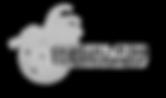 sgf logo_shaded1.png