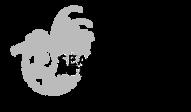 sgf logo.png