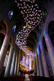 Grace cathedral birds (2).jpg