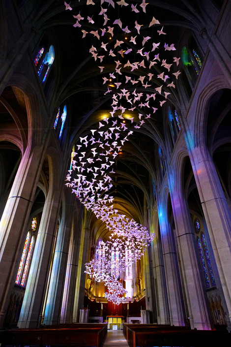 Grace cathedral birds (1).jpg