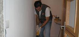 Controlo de pragas, desinfestações, desbaratização (baratas), desratização (ratos e ratazanas), vespas, moscas, mosquitos, caruncho, térmitas, bicho da madeira, formigas, pulgas