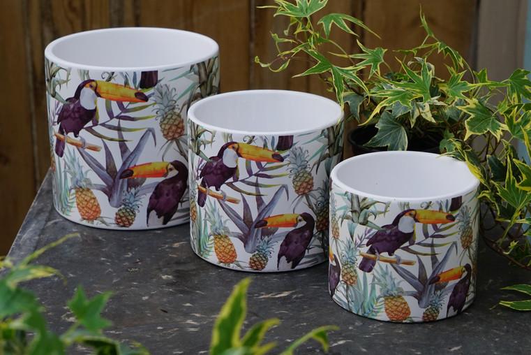 Toucan Pot Cover Set