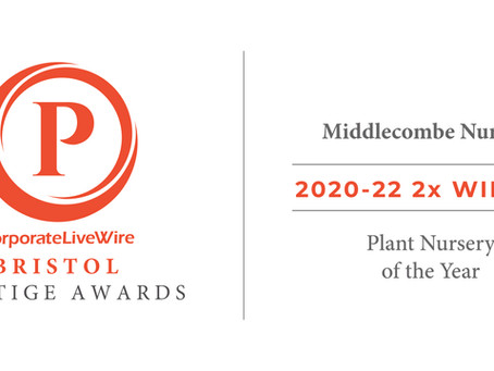Plant Nursery of the Year 2021 !!!