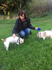 Greeengable Pet Services, Dog walking and Pet Services in Shrewsbury