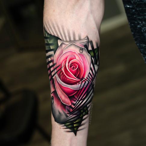 visual-illusiona-rose.jpg