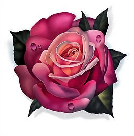 rose print.png