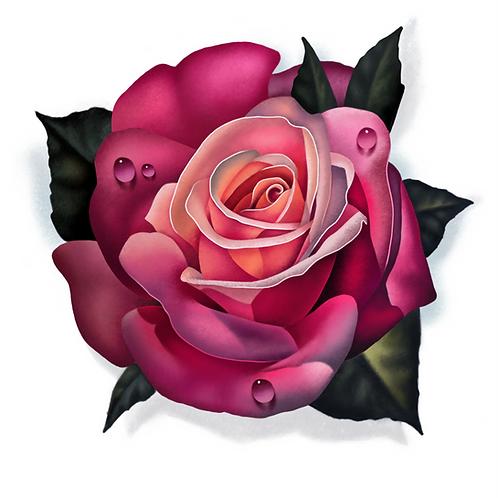 Pink Rose Print
