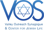 VOS logo color.png