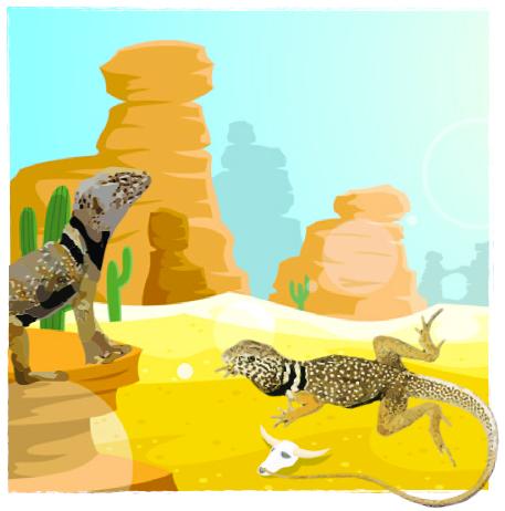 Adopt a Lizard