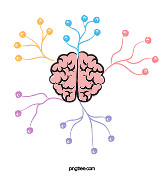 —Pngtree—cartoon brain thinking divergent color_3183116.png