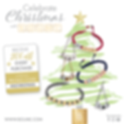 Boume-Morgan-Stanley-Christmas-Offer.png