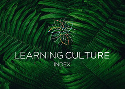 Learning-culture-logo