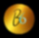 B6 nu logo.001 copy_clipped_rev_1 copy.p