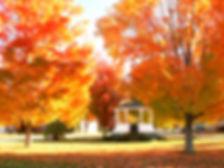 fall glow.jpg