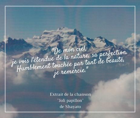 Pensée Shayato (1).png