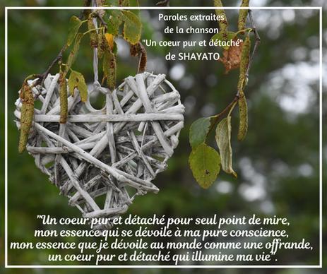 A-Pensée Shayato (2).png