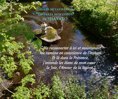 PENSÉE SHAYATO (2).png